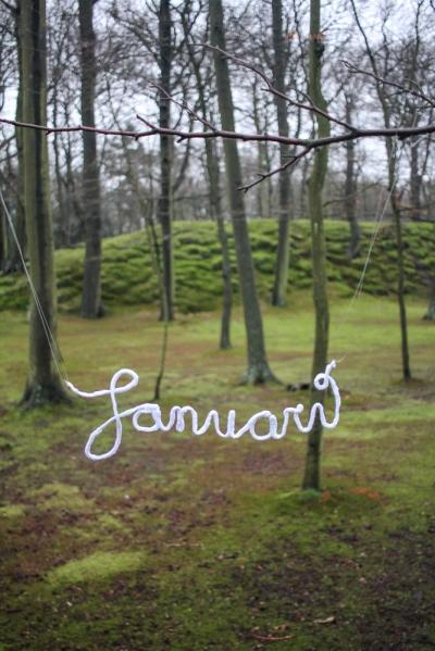 januari bos park clingendael mos