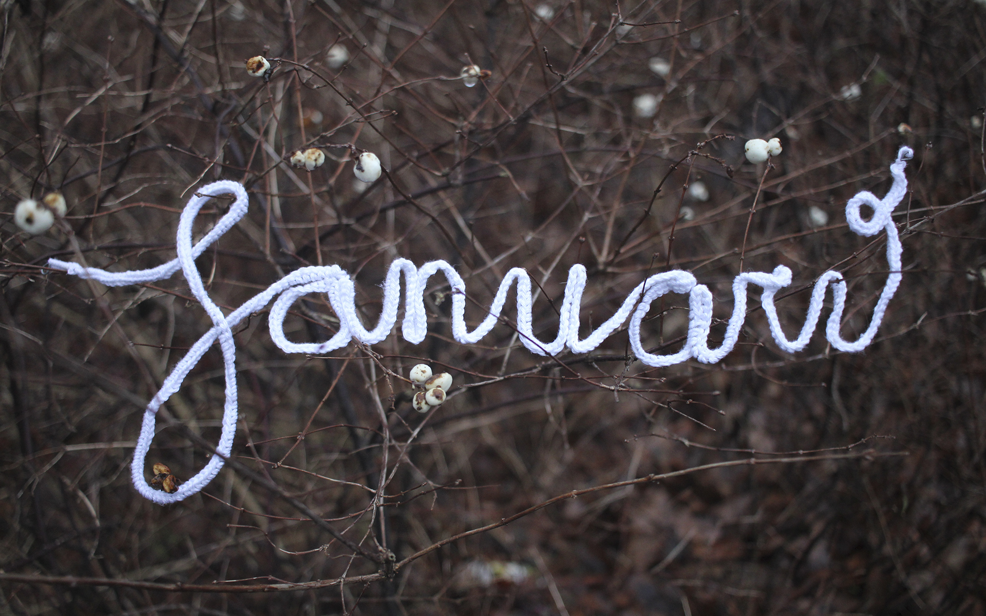 Bureaublad Busybeezzz Januari