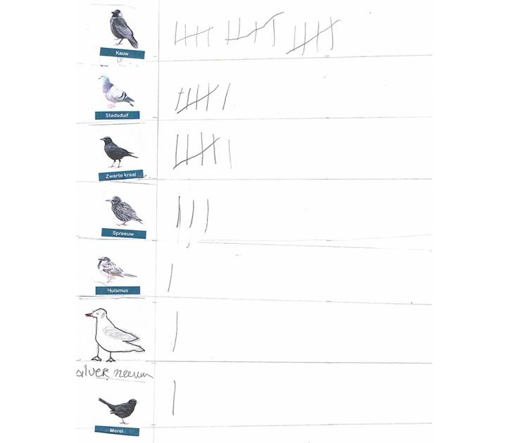 vogeltelling resultaten 2016-2